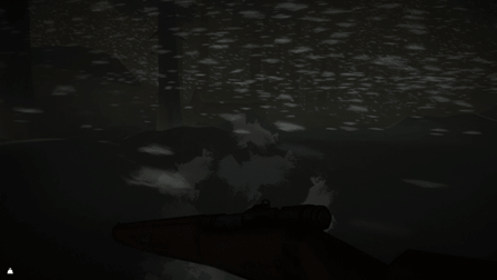 Метель, дом The long dark